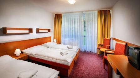 Izba v hoteli Choč 4
