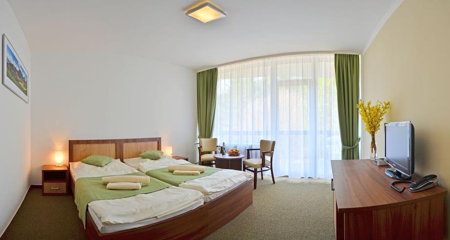 Izba v hoteli Choč 6